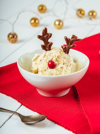 Christmas Rain-deer Mince Pie Ice Cream