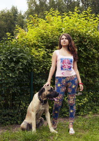 boerboel dog: young woman with a dog on a background of green bushes Stock Photo