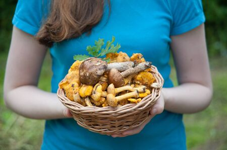basket weaving: Girl in a blue shirt holding a mushroom in a basket