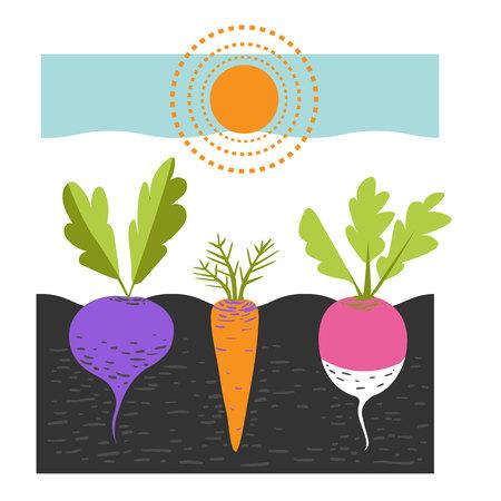 Ð¡imagen en color de verduras Ilustración de vector