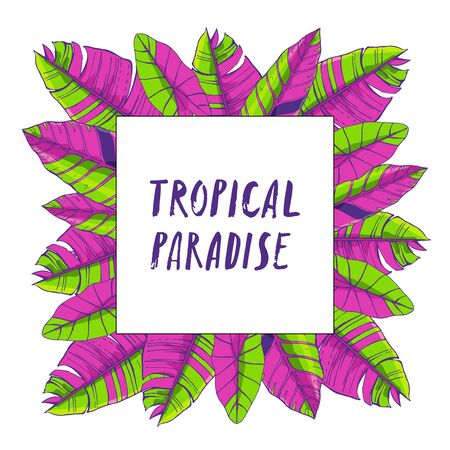 Tropical leaves collection. Vector isolated elements on the white background.