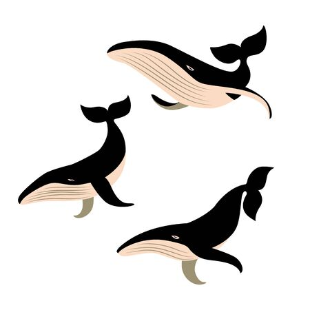 Set of vector whales .
