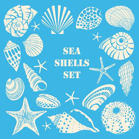 Set of different black sea shells and starfish. White outline on blue background
