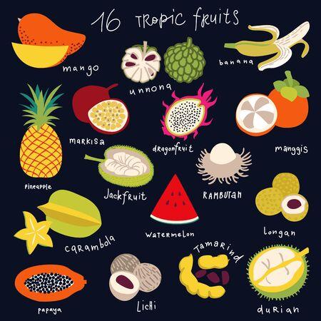Tropical fruit icon set, vector Ilustrace