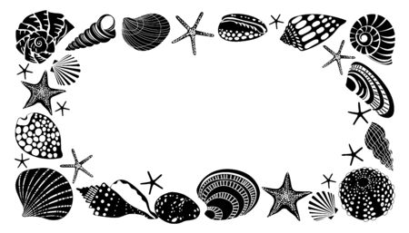 Horizontal frame of different black sea shells and starfish. Banco de Imagens - 129737884