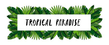 Tropical leaves collection. Vector isolated elements on the white background. Horizontal banner with hand lettering