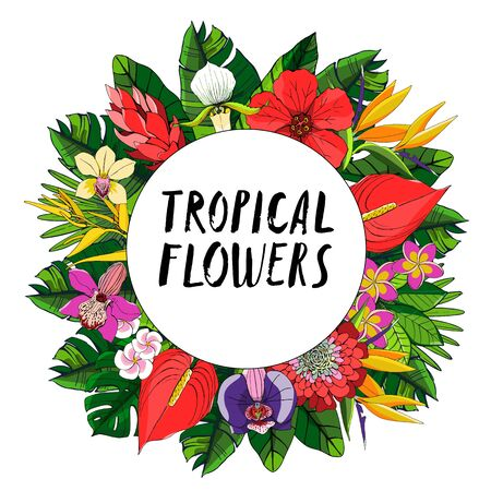 Tropical collection with exotic flowers and leaves. Vector design isolated elements on the white background.