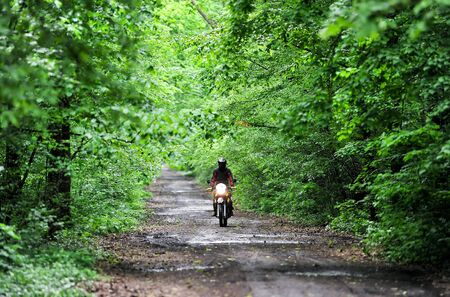 Rider driving a motorbike on forest roads