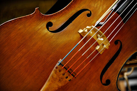 Detail of a double bass string music instrument photo