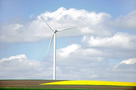 kinetic energy: Isolated wind turbine near a field of rapeseed flowers in springtime