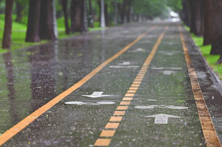 rainfall: Rainfall on bicycle lanes in a park in springtime Stock Photo