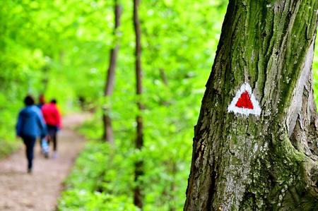 resplandor: Senderismo pintura de marcas triángulo rojo en un árbol con caminante en el rastro