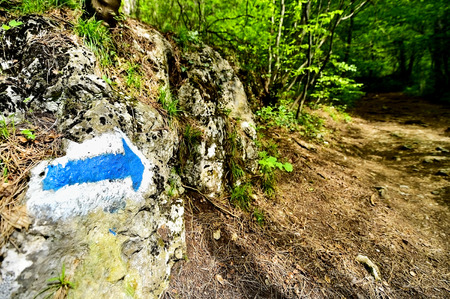 active arrow: Hiking blue arrow paint marking on a rock on the trail into the woods