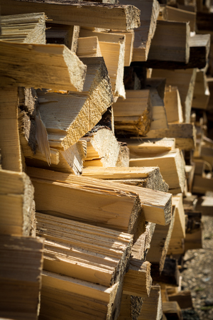 Firewood stacked and sunny day