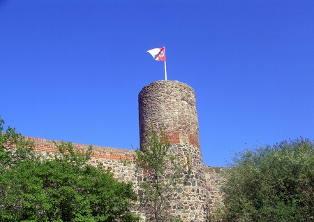 Owl s tower with coat of arms photo