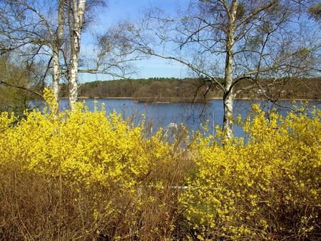 Spring on the Templiner Lake City  photo