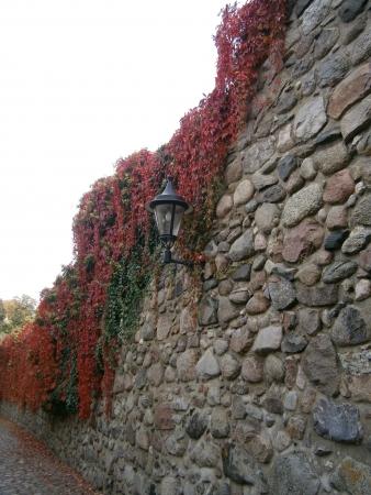 Historic city wall of Templin