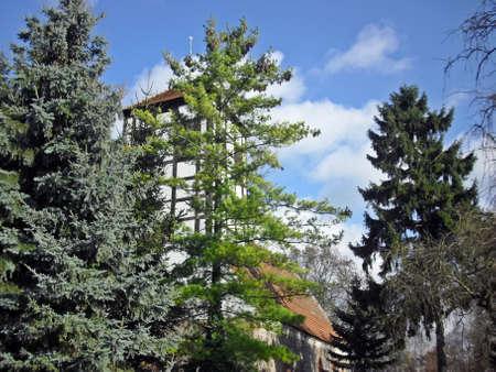 protestant: Protestant church