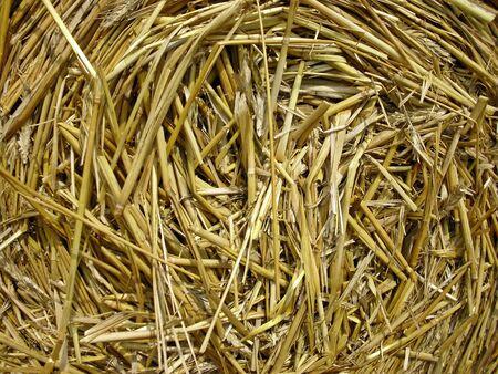 feld: The straw bales