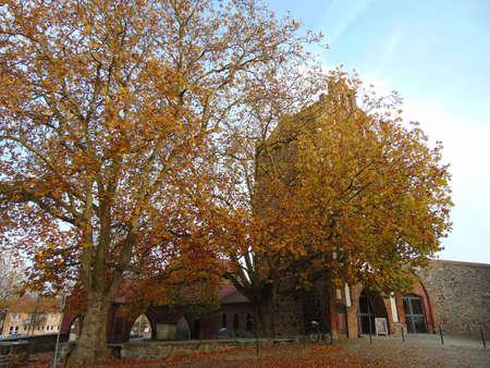 impressions: Autumn Impressions Stock Photo