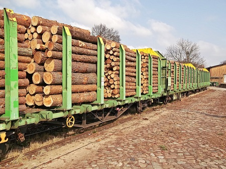 ballast: Timber transport by rail