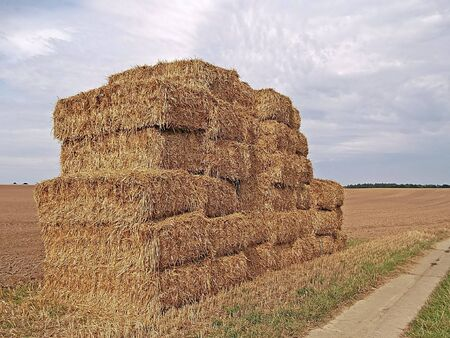 clench: Straw bales in the field