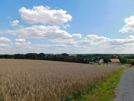 Summer impressions from the Uckermark