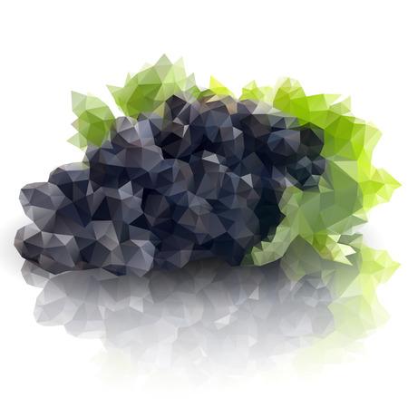 a sprig: sprig of grapes, triangle design vector illustration  Illustration