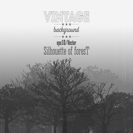 misty forest: Vintage forest background with overlay texture. Vector illustration.