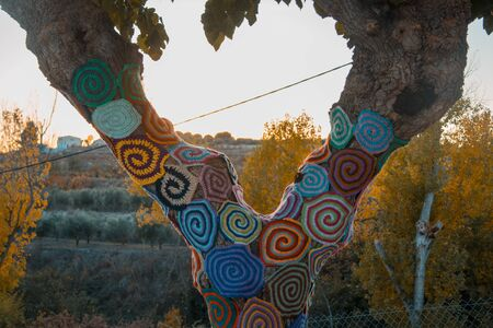 Trees with storm yarn. Decorated  with coloured wool. Street art. Hippie concept