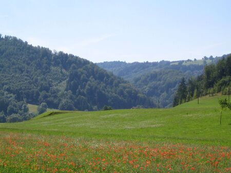 Nice Landscape with poppies in Bavaria Stock Photo - 3107508