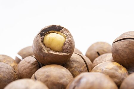 Fruits of the Australian macadamia nut on a white background. Kernels with a Shelled Shell