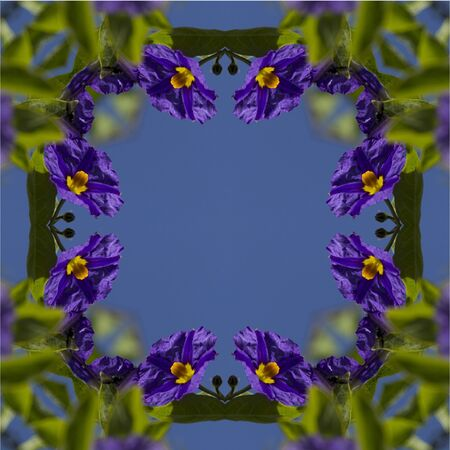 repetitive: kaleidoscope, square, texture, pattern, symmetry, background, abstract, wallpaper, abstraction, textured, repetitive, geometric, purple, flower