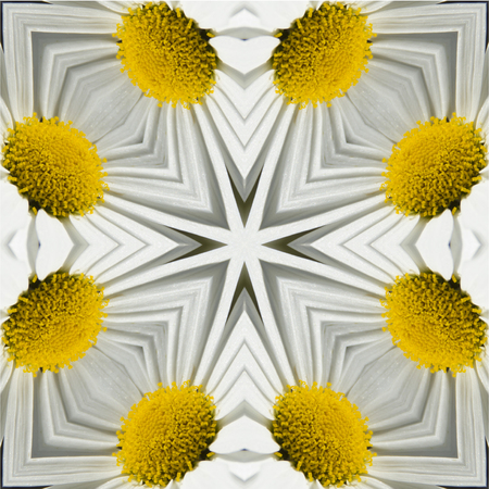background abstraction: kaleidoscope white yellow daisy Stock Photo