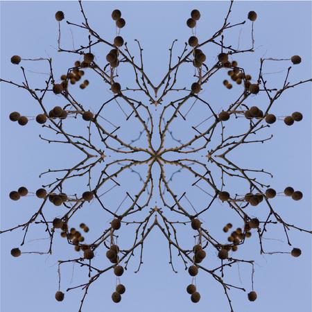 Kaleidoskop Standard-Bild - 62708553