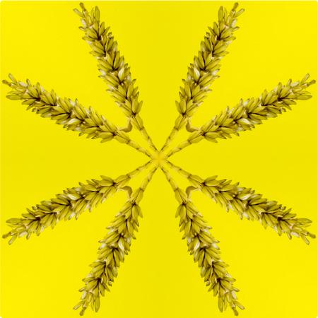 Kaleidoskop Standard-Bild - 62708570