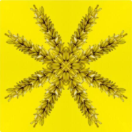 Kaleidoskop Standard-Bild - 62708571