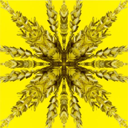 Kaleidoskop Standard-Bild - 62708572
