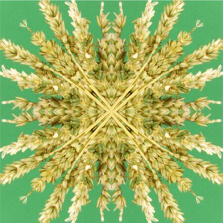 Kaleidoskop Standard-Bild - 62708577