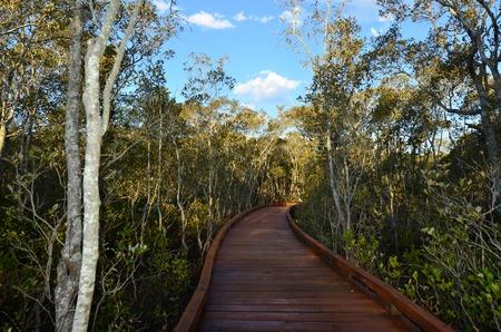 queensland: Coombabah Lakelands Queensland Australia Stock Photo