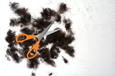 trimmed: Trimmed hair on the floor with scissors.fashion concept copy space