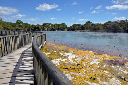 sulphide: Hot pools in Kuirau Park Rotorua, New Zealand.