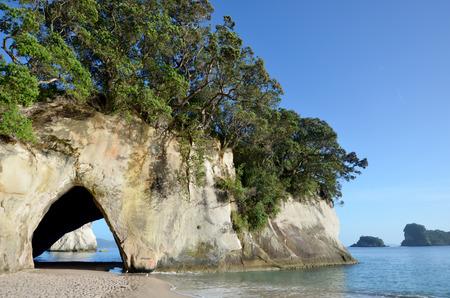 north island: Landscape view of  Te Whanganui-A-Hei (Cathedral Cove) Marine Reserve in Coromandel Peninsula North Island, New Zealand. Stock Photo