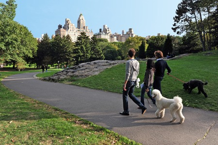 New Yorkers walks their dogs in Central Park Manhattan New York, USA.