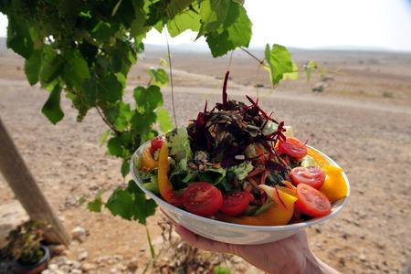 turismo ecologico: Ensalada de verduras frescas. Foto de archivo