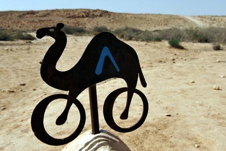 turismo ecologico: Un carril bici en el desierto de Negev, cerca de Nitzana Israel