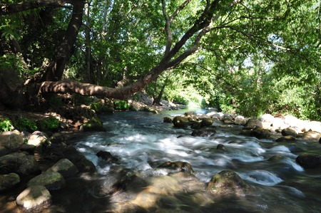 The Hasbani river that forms at the border between Lebanon and northern Israel. photo