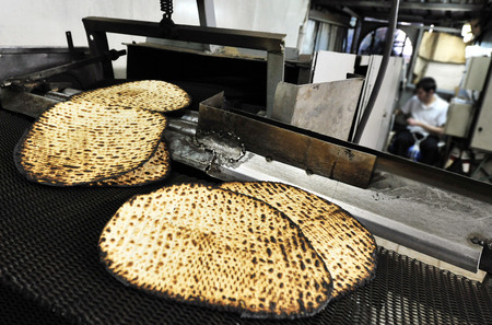 matzoh: A hand-made glat kosher matzah at matzot factory for passover  Jewish holy day.