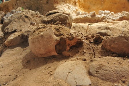 discovered: Human Scull discovered on an excavation dig