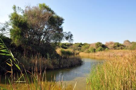 ashdod: Landscape view of Nitzanim Nature Reserve between Ashdod and Ashkelon, Israel.
